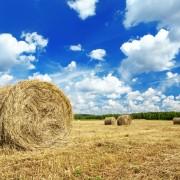 harvest landscape 180x180 - کولر گازی ایستاده جنرال zh